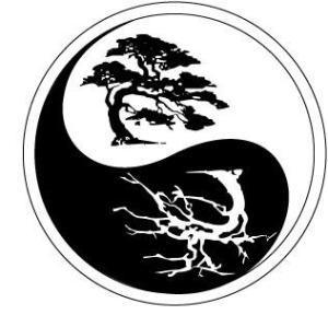 Logo yin yang jpeg_full