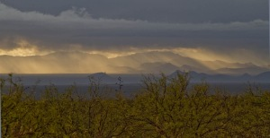 az-desert-rain