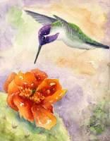 paint-Costas-Hummingbird